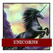 7 unicorns.jpg