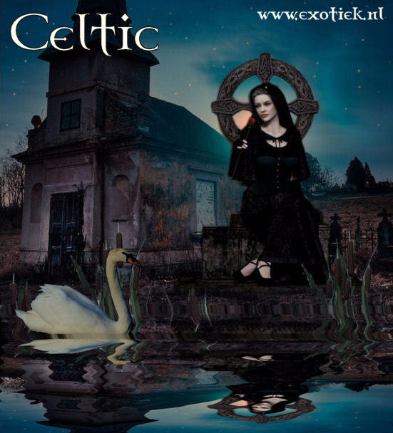 celtic widow with swan and reflection and text 2.jpg