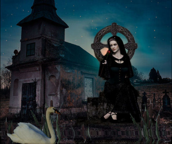 celtic widow with swan.jpg