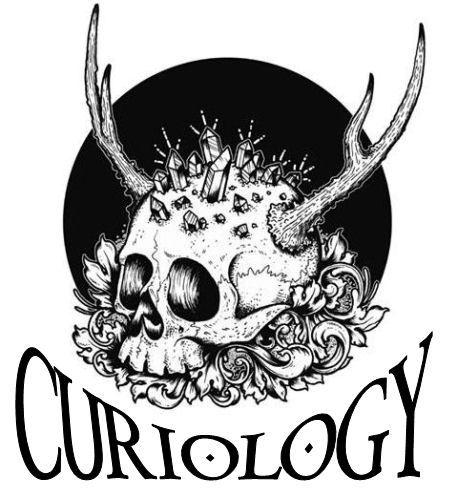 curiology logo 10.jpg