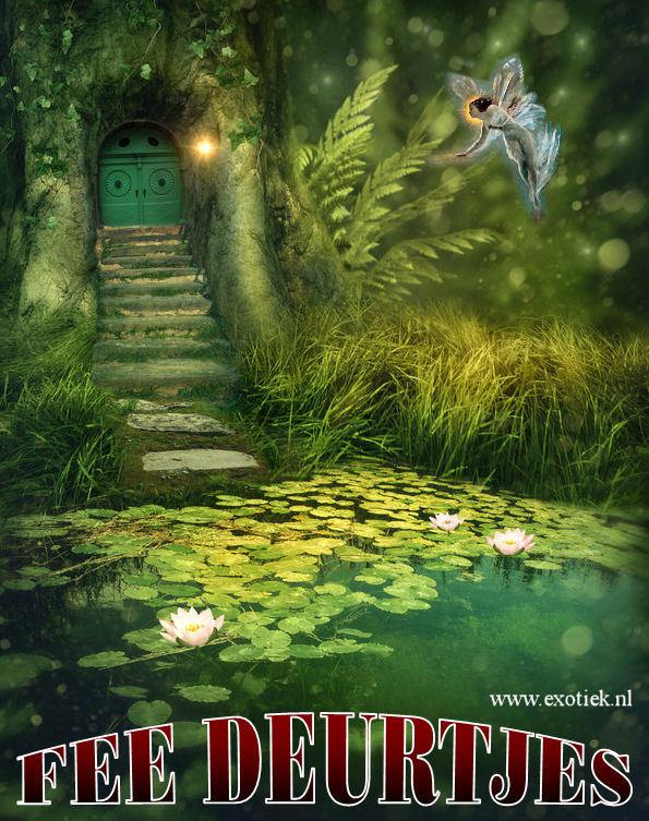fee deurtje in boom in bos met meer lotus varens 4.jpg