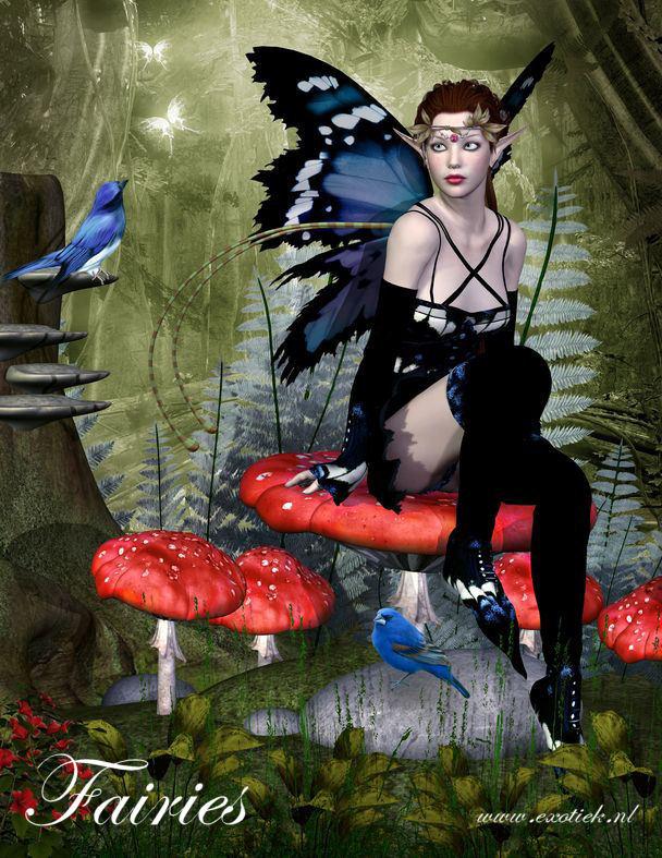 fee op paddestoel met vogels en vlinders 2.jpg
