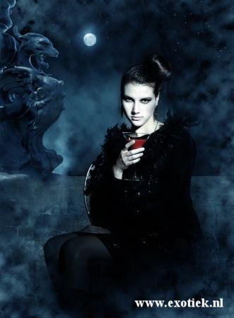 gothic draak met vampier 2.jpg