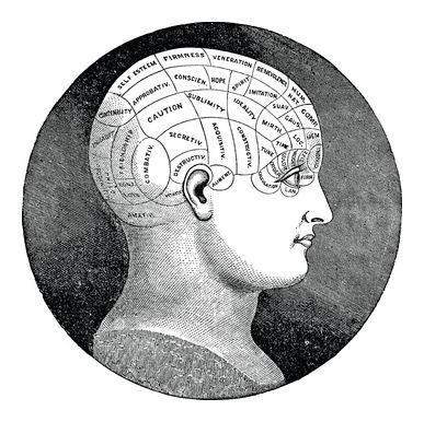 phrenology head.jpg