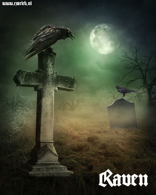 raven op grafstenen in kerkhof.jpg