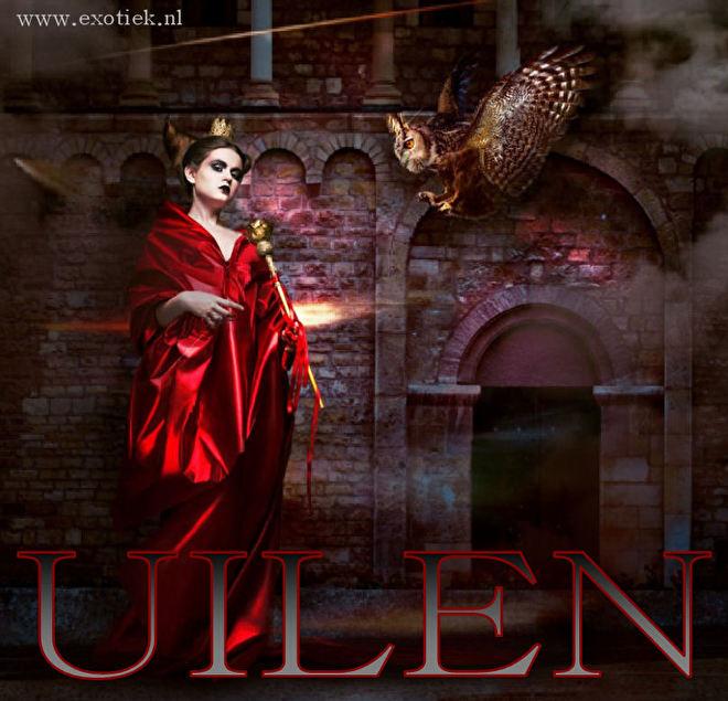 uil aan het vliegen met gothic tovenares in rode jurk 4.jpg