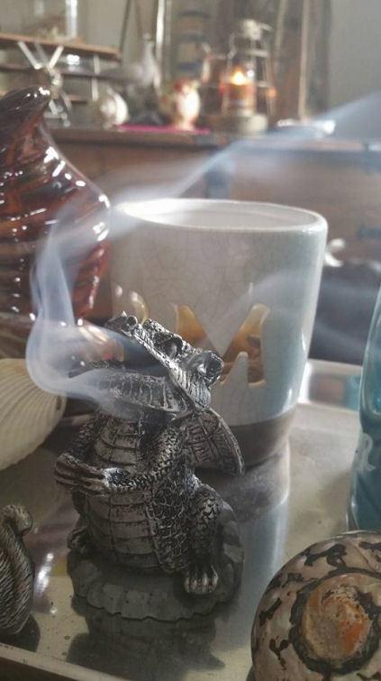wierookbrander zilveren draak in aktie.jpg