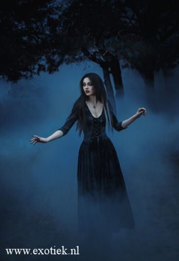 witch in the mist 2.jpg