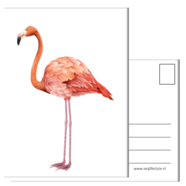 KINDERKAART:  FLAMINGO