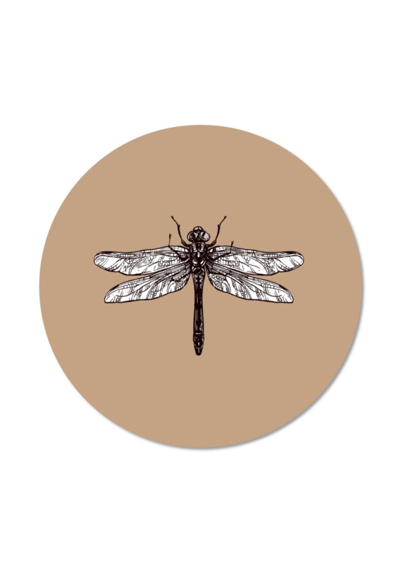 MINI DRAGONFLY BROWN