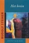 Rudolf Steiner: Het brein
