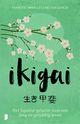 Bettina Lemke: Ikigai - Werkboek