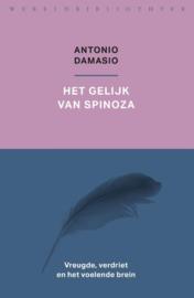 Antonio Damasio: Het gelijk van Spinoza