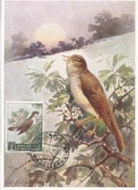 1960 SAN MARINO Nightingale