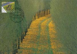 ® 2006 - CATA 2400 Groene Kathedraal Almere