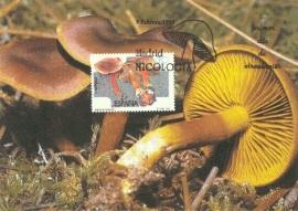1995 SPAIN - Mushroom Cortinario