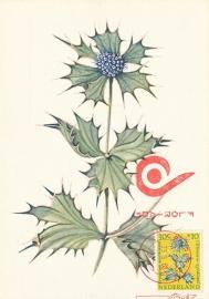 ® 1960 - CATA 742 Zeedistel