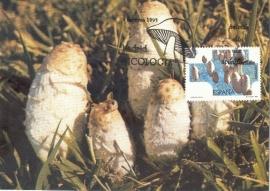 1995 SPAIN - Mushroom Coprino
