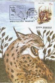 1993 ROMANIA - Lynx