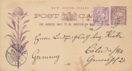 © 1895 NEW SOUTH WALES - AUSTRALIA Crown and leaves