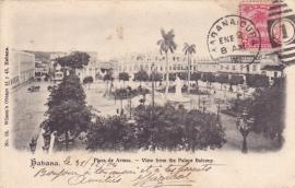 © 1905 - CUBA - Palm trees