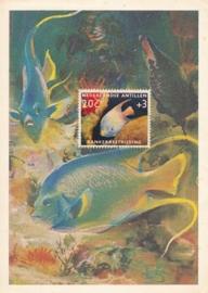 ®® 1960 NVPH 316 NED. ANTILLEN Tropische vis