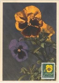 1958 SWITZERLAND Violets