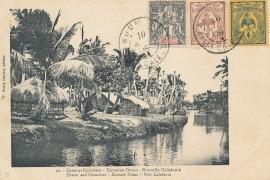 © 1908 - NEW CALEDONIA - Palm leaves