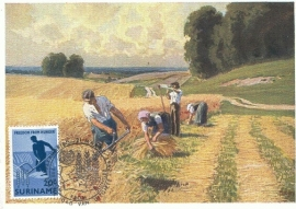 1963 SURINAM - Harvest time - Grain