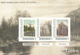 *** Leiden ***  Verleden