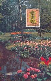 ® 1960 - CATA 739 Gaspeldoorn