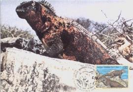 1997 UN GENEVE - Iguane