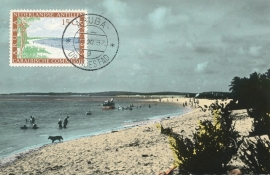 ®® 1955 NVPH 255 NED. ANTILLEN Strandgezicht Aruba