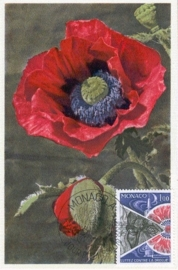 1977 FRANCE - Papaver Poppies