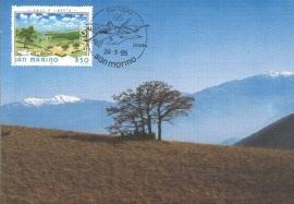 1995 SAN MARINO Trees