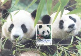 þþþ - Panda 2017 Wu Wen