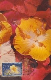 ®® 1955 NVPH 249 NED. ANTILLEN Hibiscus
