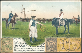 © 1902 - HUNGARY T-shaped sweep well