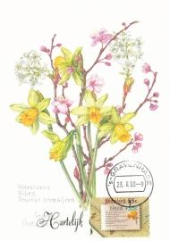 ® 1988 - CATA 1396 Narcissen