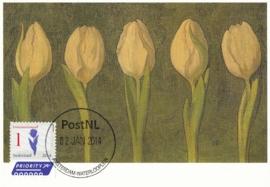 ® 2014 - CATA 3154 Tulpen