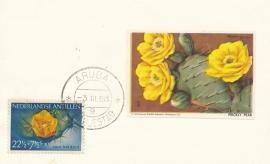 ®® 1955 NVPH 251 NED. ANTILLEN Cactus