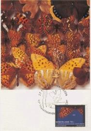 2006 NETHERLANDS Butterfly Lepidoptera