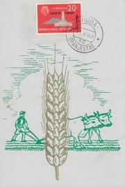 ®® 1963 NVPH 333 NED. ANTILLEN Korenaren