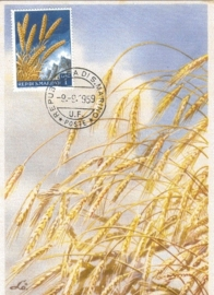 1959 SAN MARINO Harvest Grain