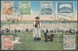 © 1919 - HUNGARY Local farmer