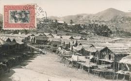 © 1933 - PAPUA Tree houses