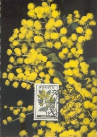 1959 MONACO - Mimosa