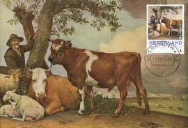 þþþ - Mauritshuis Jonge stier