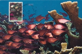 ®® 1991 NVPH 970 NED. ANTILLEN Tropische vissen