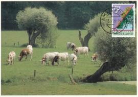 ® 1986 - CATA 1354 Bomen